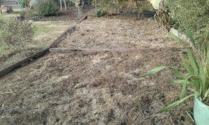 no_dig_garden